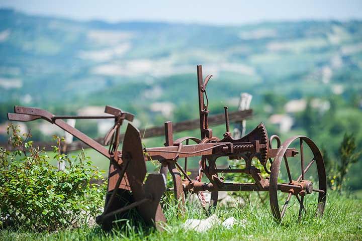 agriturismo-marche-museo-agricolo-2